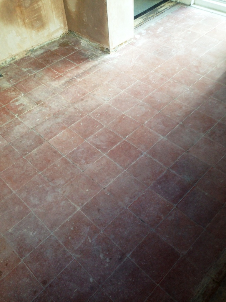 Quarry Tile Cleaning Before