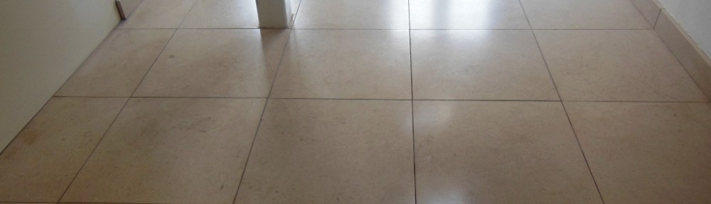 Limestone Tiled Floor Strip and Seal in Wimbledon