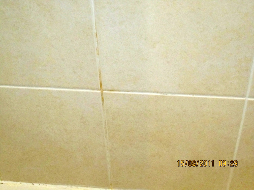 Tiled Shower Clean and Seal in Caterham | East Surrey Tile Doctor