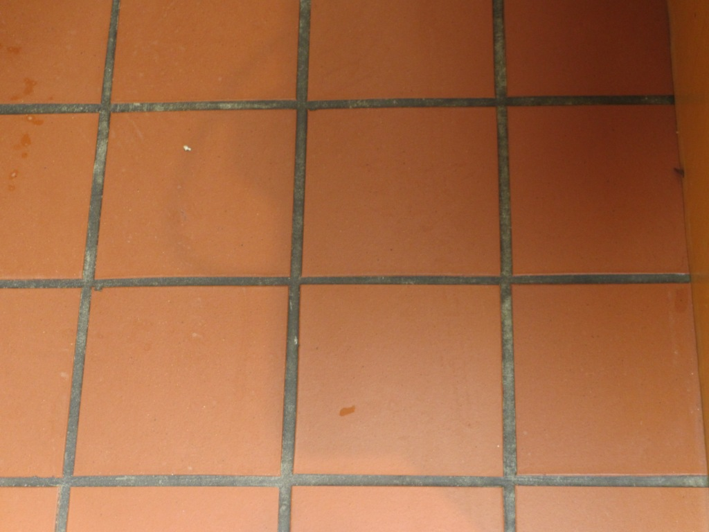 Quarry tiles south london tile doctor quarry tile cleaning before zoom dailygadgetfo Choice Image