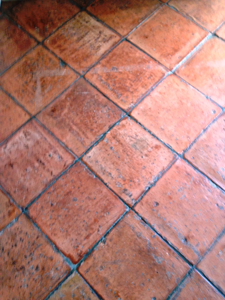 Polishing terracotta floor tiles