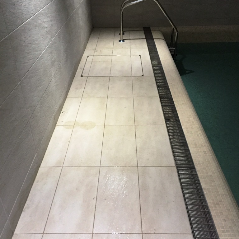 Textured Porcelain Swimming Pool Tile Before Rust Removal Dorking